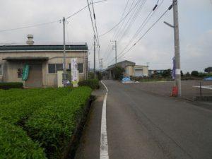 富士ベリーファームのお茶工場と駐車場